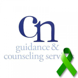 Central Nassau Guidance and Counseling Addiction Recovery Treatment Services Hicksville NY