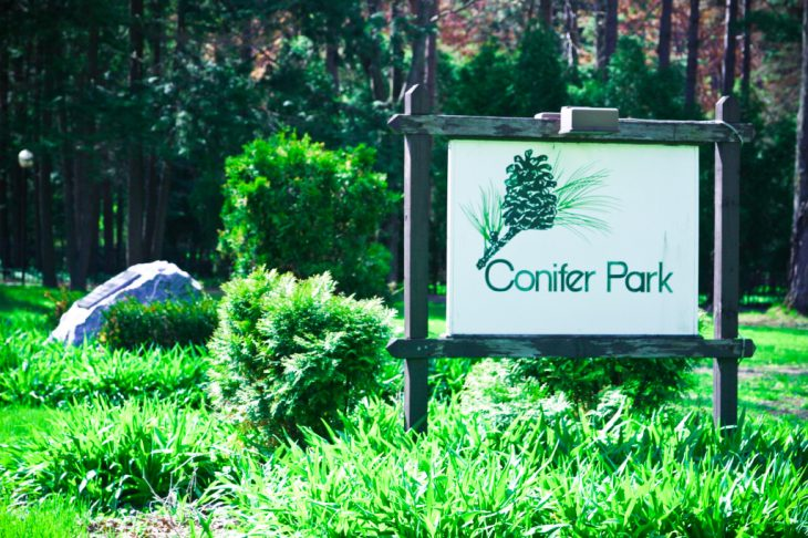 Conifer Park Inc MSW IP Schenectady NY