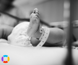 dependent newborns